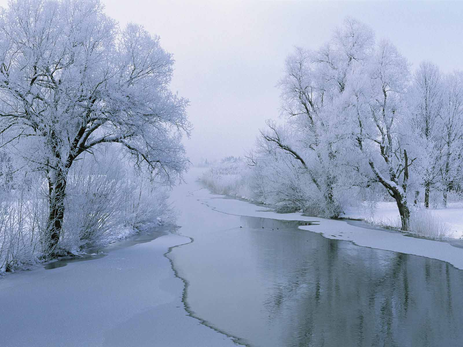 HD Wallpapers: Winter Scenes For Desktop