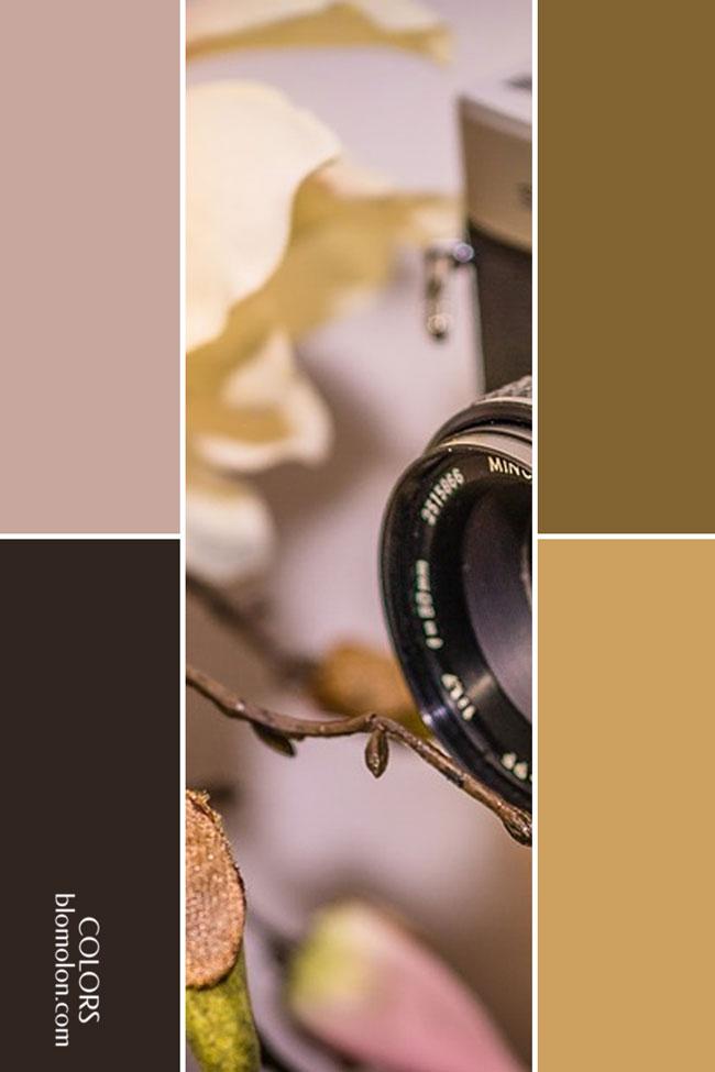 variedad_en_color_combinacion_5