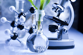 NK Patent Law Active in IP Asset Transfer, Growing Bio Business Events