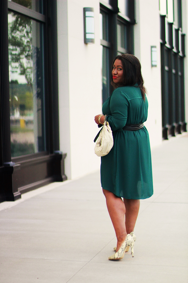 Shapely chic sheri plus size fashion and style blog for curvy women my favorite looks of 2014 Fashion bloggers style tv