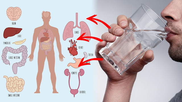 The Benefits of Sipping Hot, Ionized Water