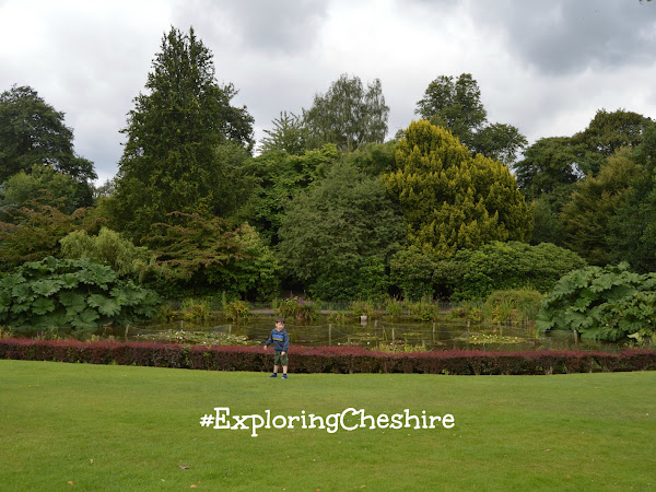 Exploring Cheshire This Summer