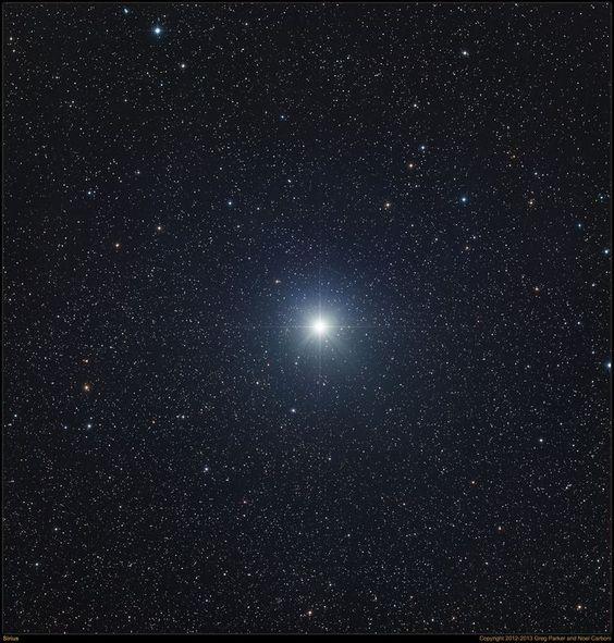 Sirius is the brightest star in the night sky . It shines in the constellation of Canis Major and is visible from most everywhere in the Northern Hemisphere during the winter months.