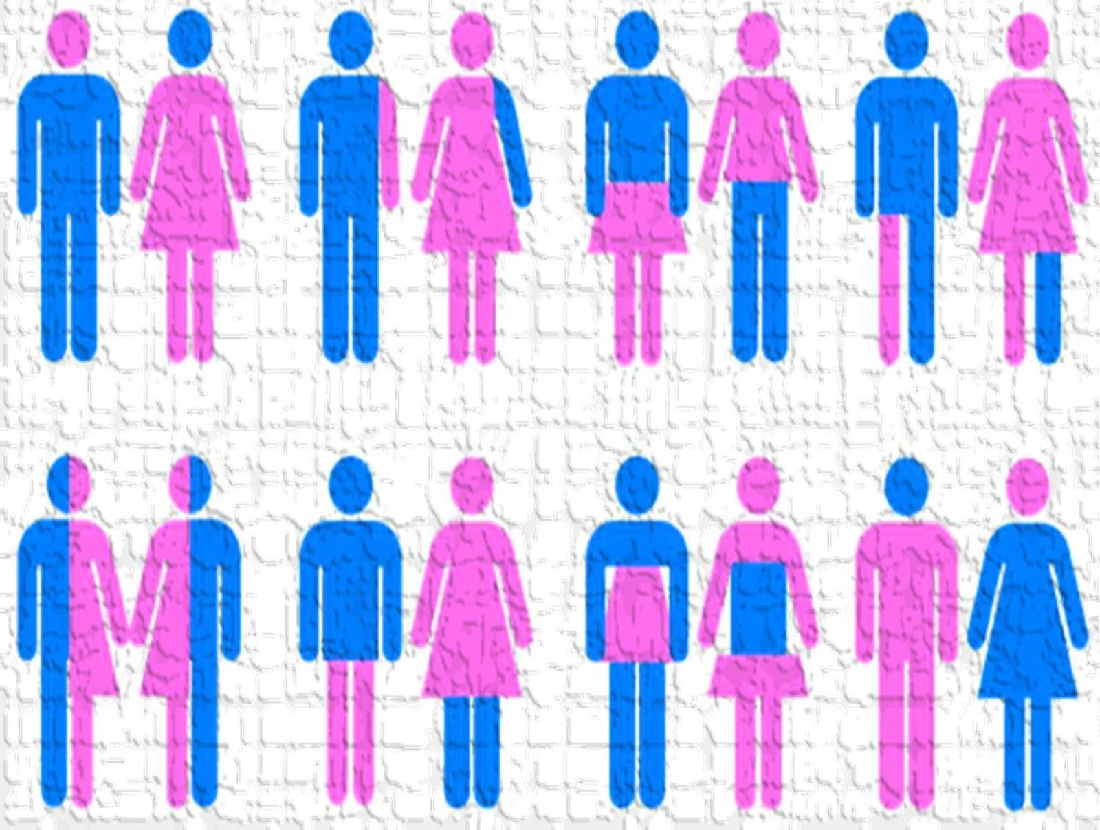 الهوية الجندرية والمجتمع