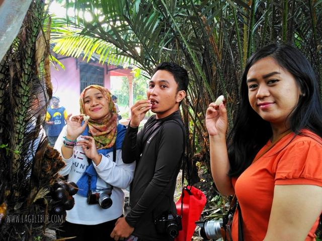 Mencicipi Salak Desa Wisata Pancoh Sleman DIY