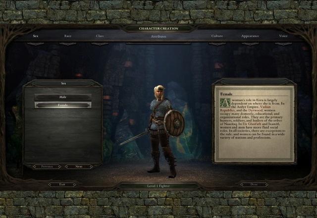 Pillars of Eternity PC Games Gameplay
