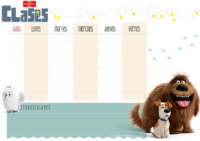 vuelta al cole horario mascotas