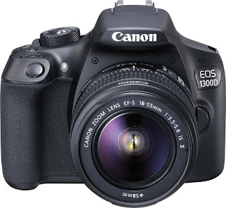 Entry level DSLRs