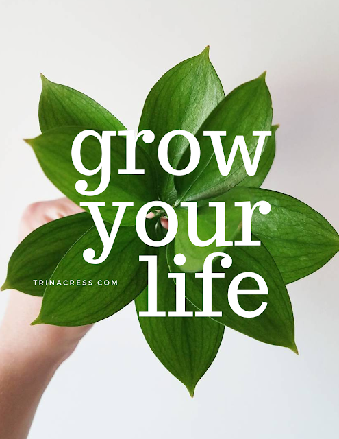 Grow Your Life - free printable journal pages to plant, water, and grow your life