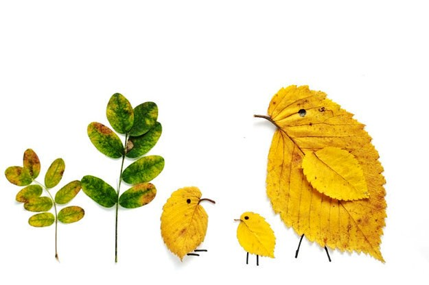 Leaf Animals Craft Ideas And Easy Crafts