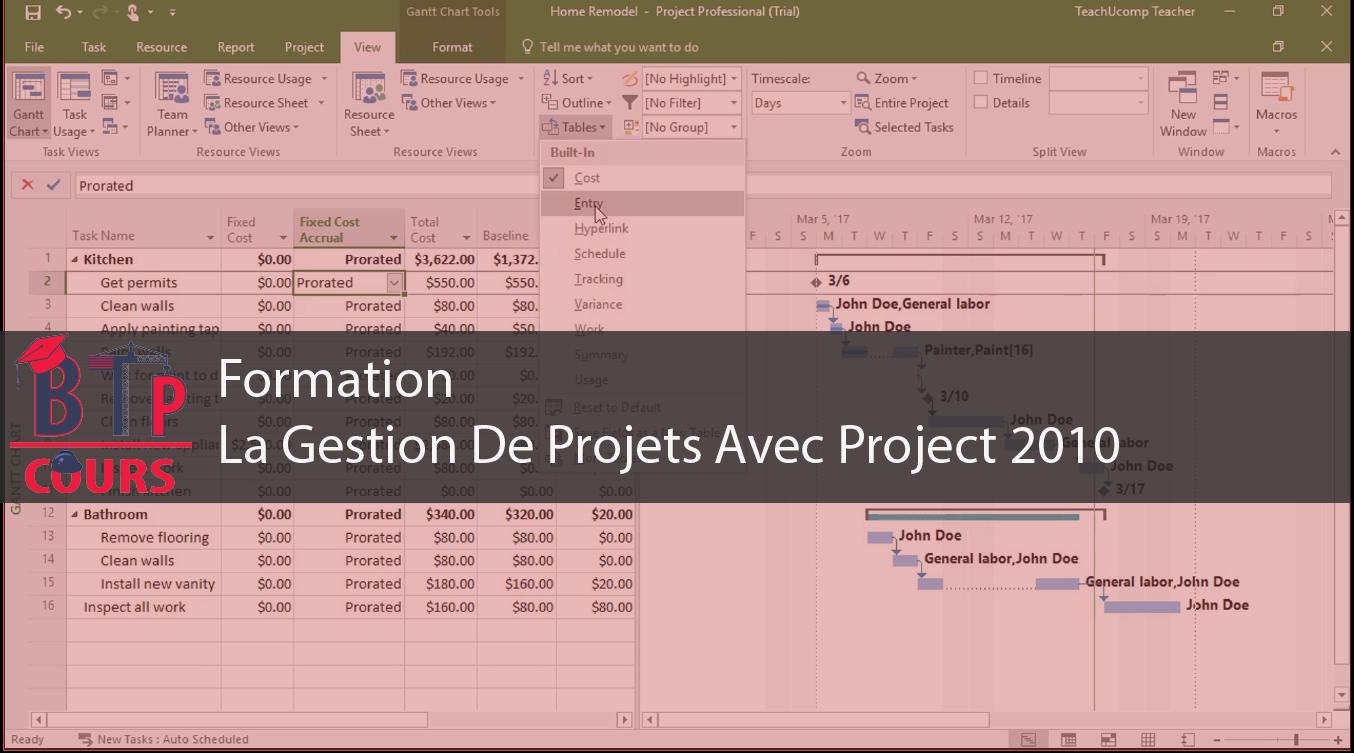 formation  la gestion de projets avec project 2010
