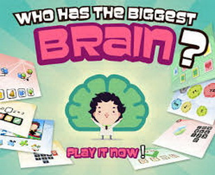 Who has the Biggest Brain