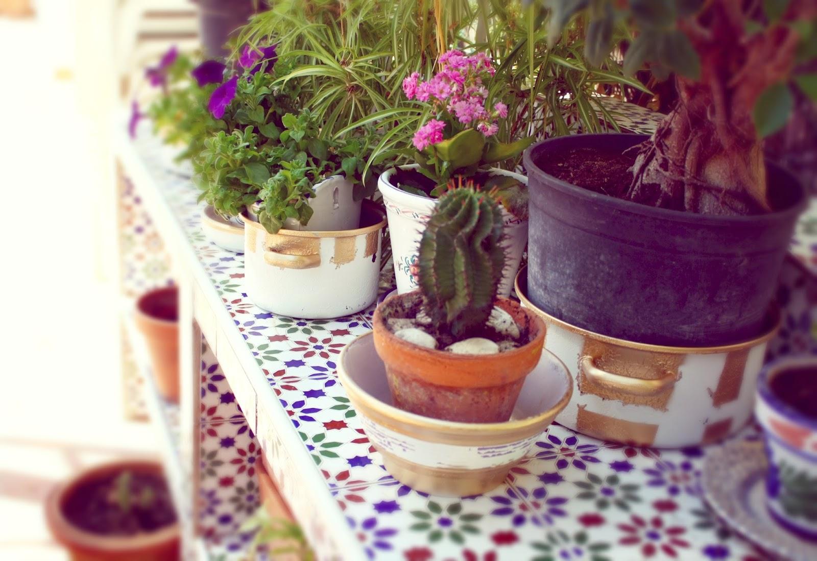Plantas en maceteros DIY