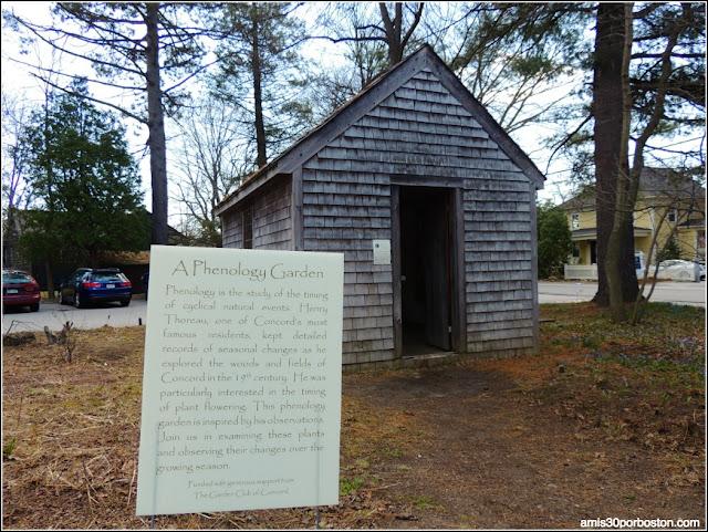 Museo Concord:Cabaña de Henry D. Thoreau