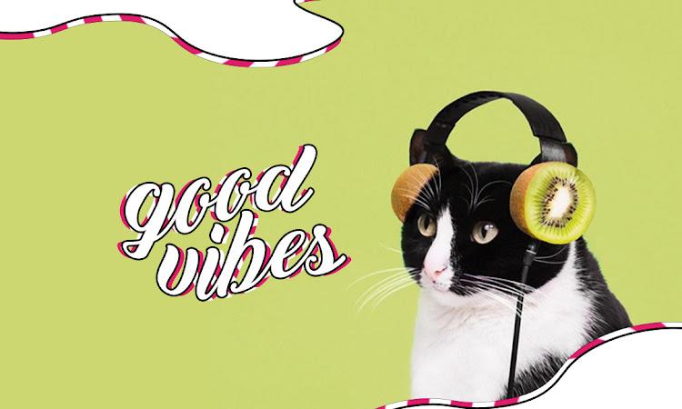 good vibes 🎉 | Maio
