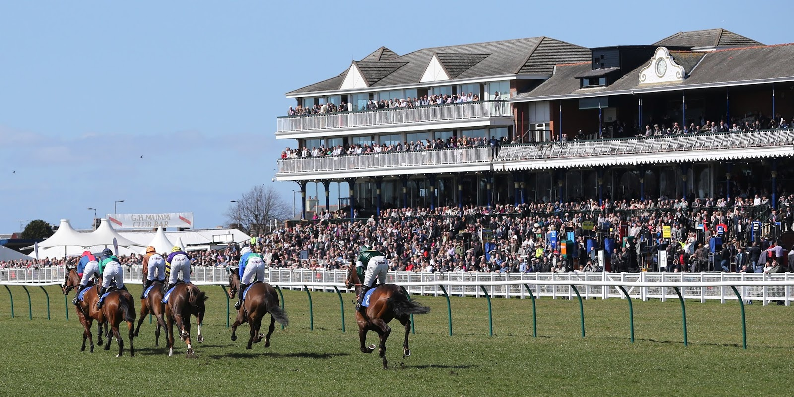 Ayrshire Scotland Business News Ayr Racecourse One Of 8 Uk Tracks