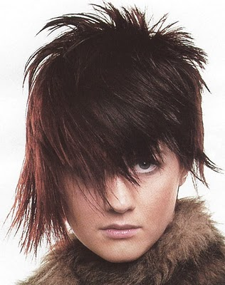 Pleasant Emo Hairstyles For Girls Emo Punk Hairstyles For Men And Women Short Hairstyles Gunalazisus