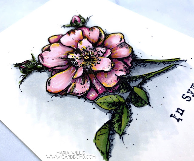 #mariawillis, #cardbomb, #heroarts, #floralrosestemdiecombo, #sympathy, #stamp, #ink, #paper, #copics, #copicmarkers,  #flower, #rose, #color, #art, #papercraft,