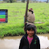 Como un acto de verdadera justicia catalogan restitución de tierras a comunidad mapuche