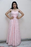 Sakshi Kakkar in beautiful light pink gown at Idem Deyyam music launch ~ Celebrities Exclusive Galleries 036.JPG
