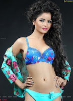 Bollywood Beauties ~  Exlusive 050.jpg