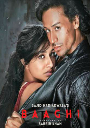 Poster of Baaghi 2016 Full Hindi Movie Download BRRip 1080p