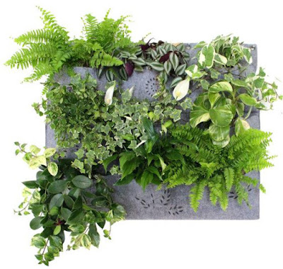Watertight Wall Planter