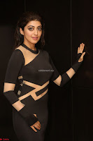 Pranitha Subhash in a skin tight backless brown gown at 64th Jio Filmfare Awards South ~  Exclusive 139.JPG