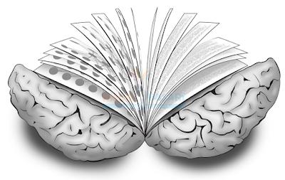 Bilim dünyası insan beynini farklı bir biçimde etkileyen on romanı belirledi.