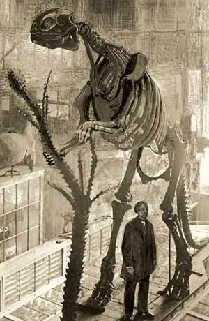 The Atlantean Conspiracy: Dinosaur Hoax - Dinosaurs Never