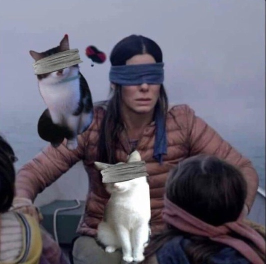 5563c6038a1 Bird Box is a 2018 American post-apocalyptic drama thriller film directed  by Susanne Bier from a screenplay written by Eric Heisserer