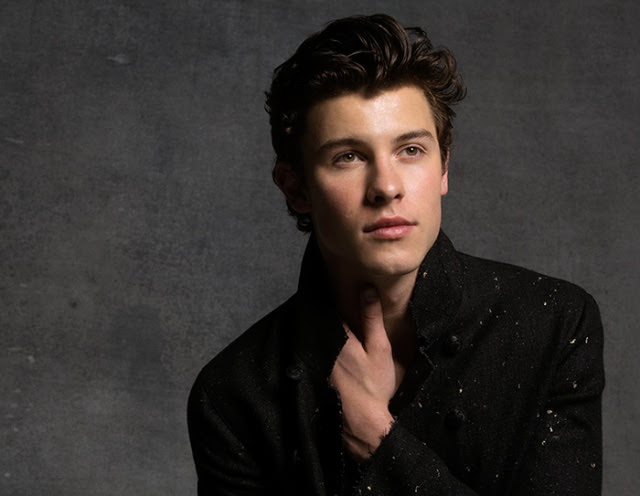 Video: Shawn Mendes - In My Blood