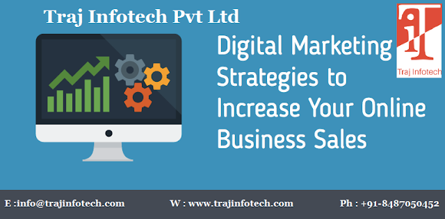 Digital Marketing Strategies - Traj Infotech