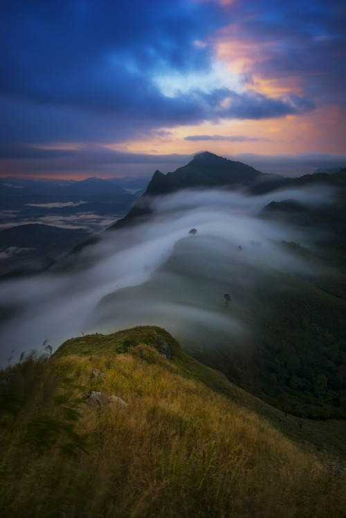 The mist on the top of Pha tang Hill, Chiangrai, Thailand.