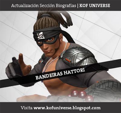 http://kofuniverse.blogspot.mx/2010/07/bandeiras-hattori.html