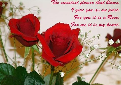 Best Rose Day 2016 SMS