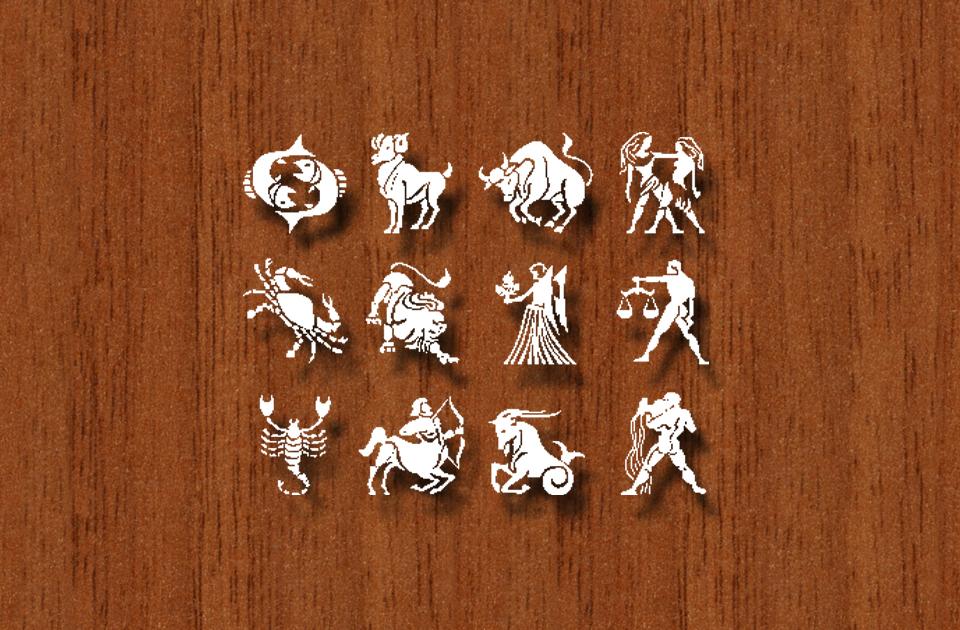 What is rasi in vedic astrology vedic