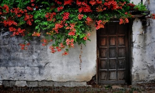 Rüyada Kapı Görmek  {featured}
