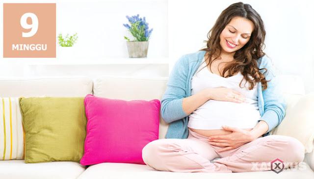 10 Fakta Kehamilan dan Janin Usia 9 Minggu Yang Harus Diketahui Oleh Ibu Hamil