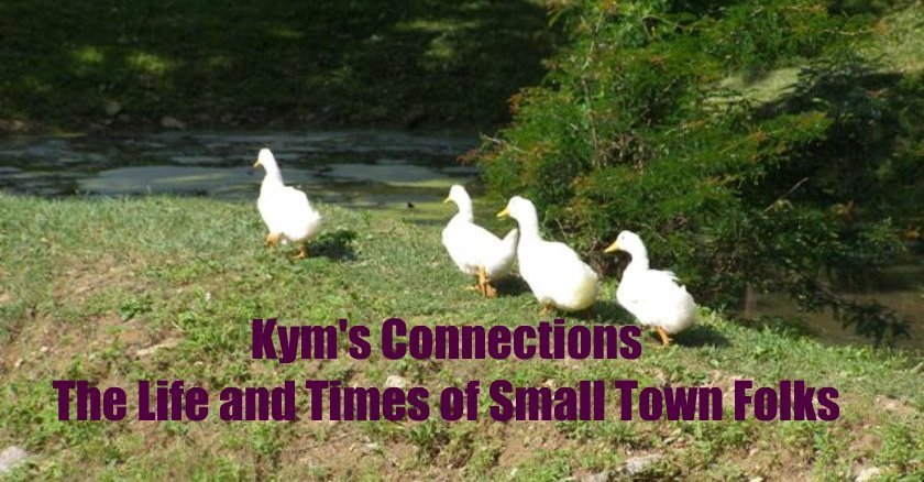 Kym's Connections