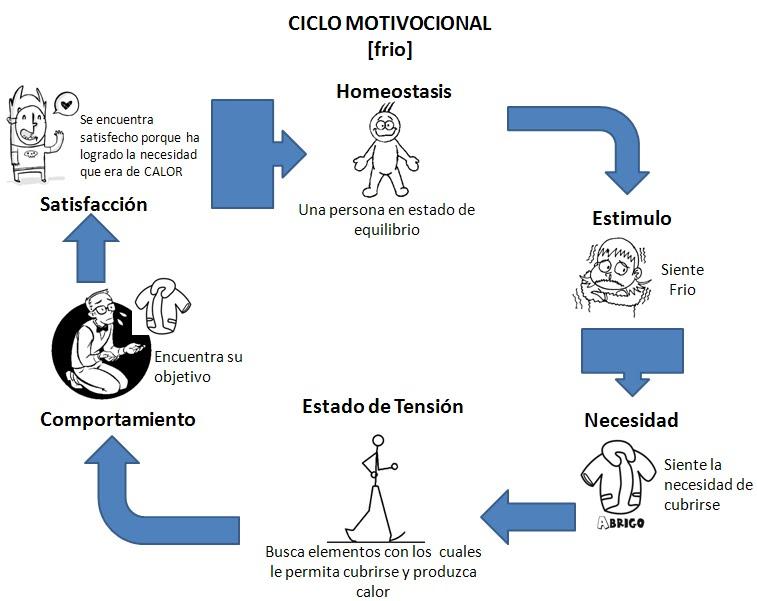 Procesos Administrativos El Ciclo Motivacional