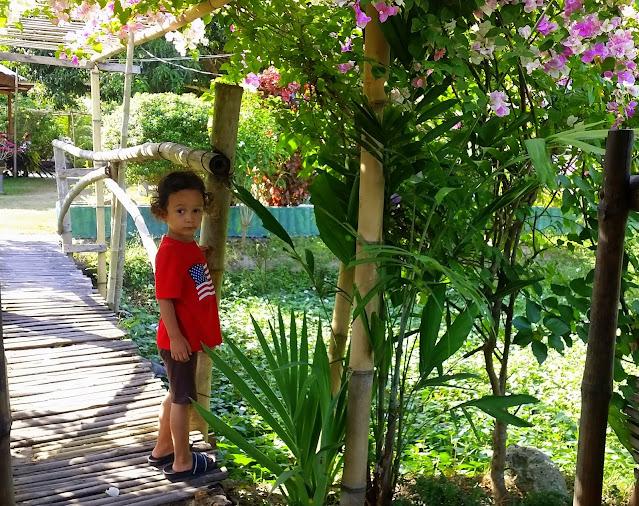 Boy exploring the area