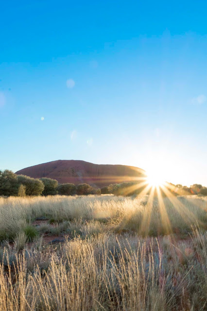 7 Reasons Campervans Are Best for Road Trip In Australia