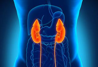 Gejala awal penyakit ginjal yang mudah di kenali