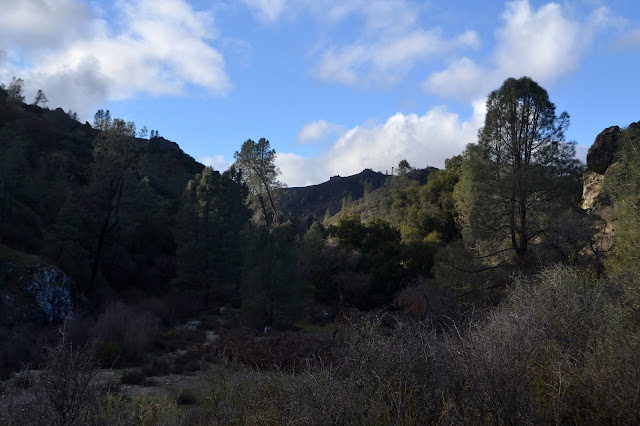 more canyon