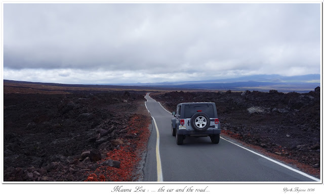 Mauna Loa: ... the car and the road...