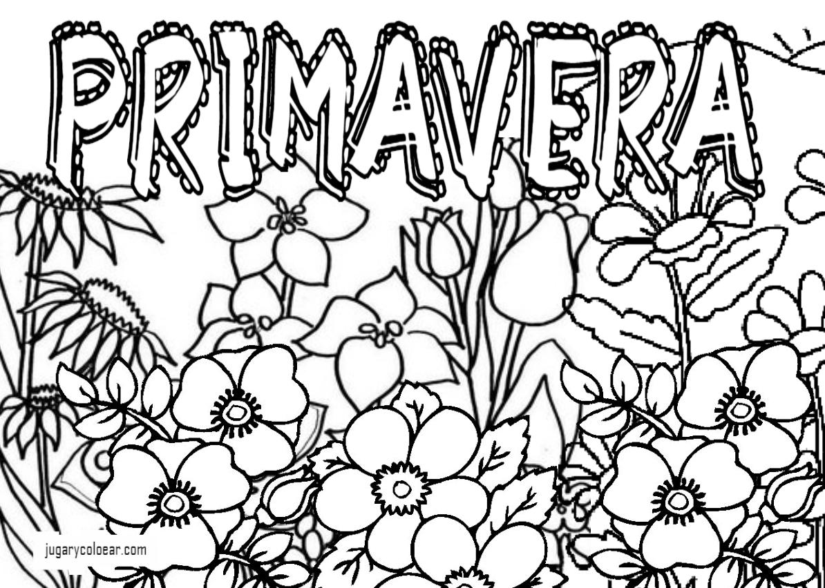 Dibujos De Flores Para Recortar Y Colorear: Colorear Flores De Primavera