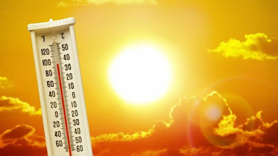 Tại sao mồ hôi lại giúp chúng ta vượt qua được cái nắng nóng khắc nghiệt