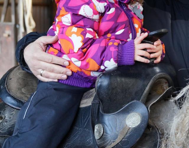 Spaß und Action für die ganze Familie: Das KidsVIP Programm von Westerland.dk Dänemark Urlaub Kinder Ausflüge Attraktionen Blavand Zoo Tierpark
