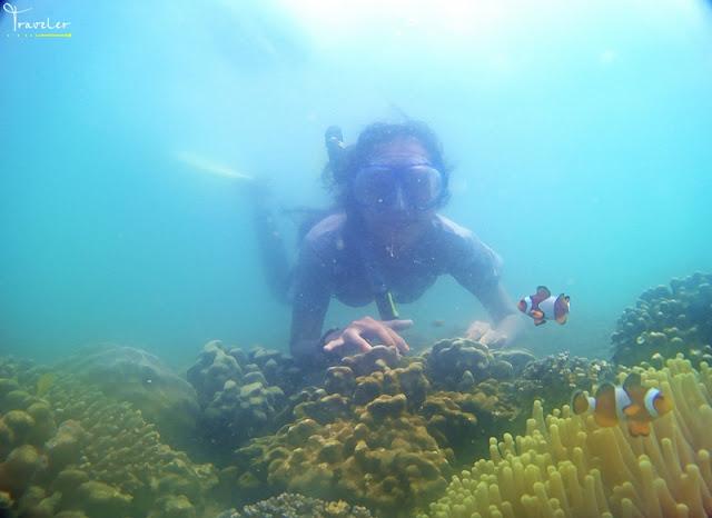 snorkeling gili ketapang